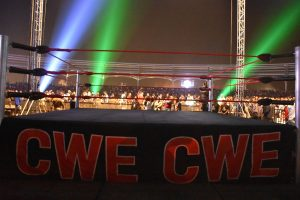 CWE Great Khali Wrestling Academy, Address, Contact Number