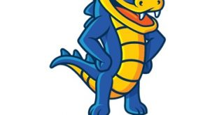 Hostgator Indian Customer Care Toll Free Number, Email Address Support Complaint