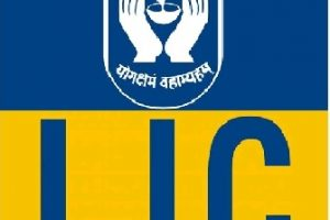 Lic Customer Care Toll Free Number, Branch Office Numbers, Email Enquiry